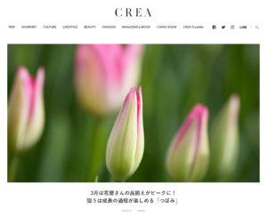 CREA20210305